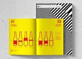 2in1年度报告画册设计